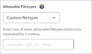 The Allowable Filetypes filed with the Custom filetypes option selected opens a text field to list the allowable file extensions